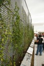 solar_decathlon-105-006